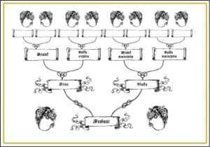 drzewo genealogiczne 3